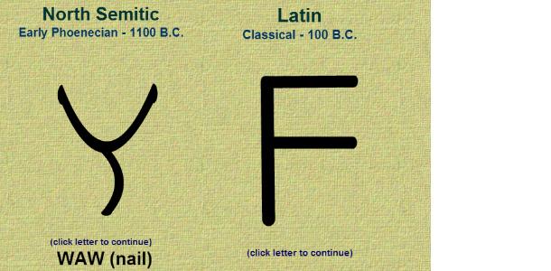 Как формировался алфавит английского языка: буква F